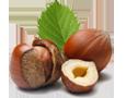 Goûts - Saucisson au chocolat aux noisettes